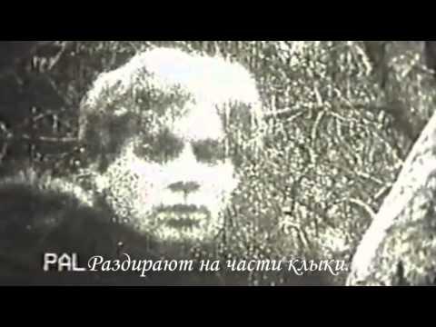Читает Есенин - Мир таинственный, мир мой древний