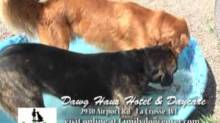 Dawg Haus Hotel Revised cut
