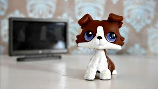LPS: 10 Things I Hate About TV Shows!