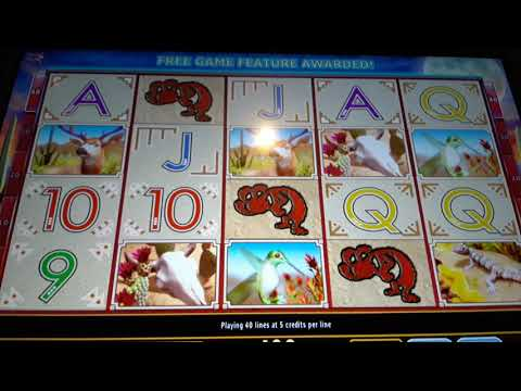 Holland Casino Venlo 💥Coyote Moon💥 Super Lauf Auf 2 Euro (kostenlos Abonnieren)