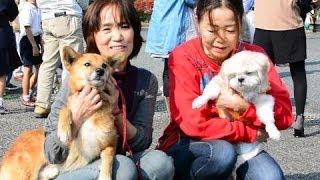 長寿犬とその飼い主への表彰式が11月4日、玉名市の玉名地域振興局で...