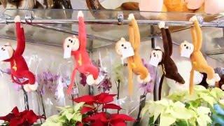 Доставка квітів та м'яких іграшок П'ятигорськ, Єсентуки, п. Иноземцево, місто Лермонтов, п. Винсады