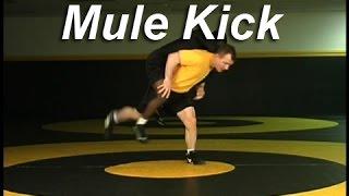 Wrestling Moves KOLAT.COM Stand-up Mule Kick
