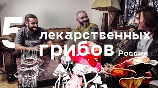 5 самых полезных грибов России. Михаил Вишневский