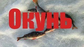 Зимняя рыбалка !База отдыха Фокино Приволжье! Второй день, учусь ловить на мотыля