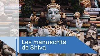 Les mystérieux manuscrits de Shiva | Reportage CNRS