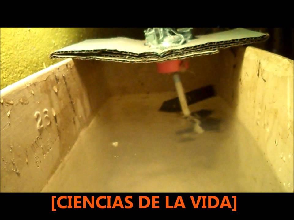 Invento casero oxigenador 1 del agua estancada rd for Peces de agua estancada