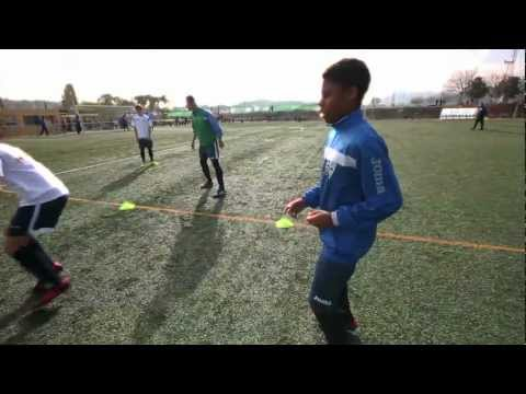NG Players:Martin Davis