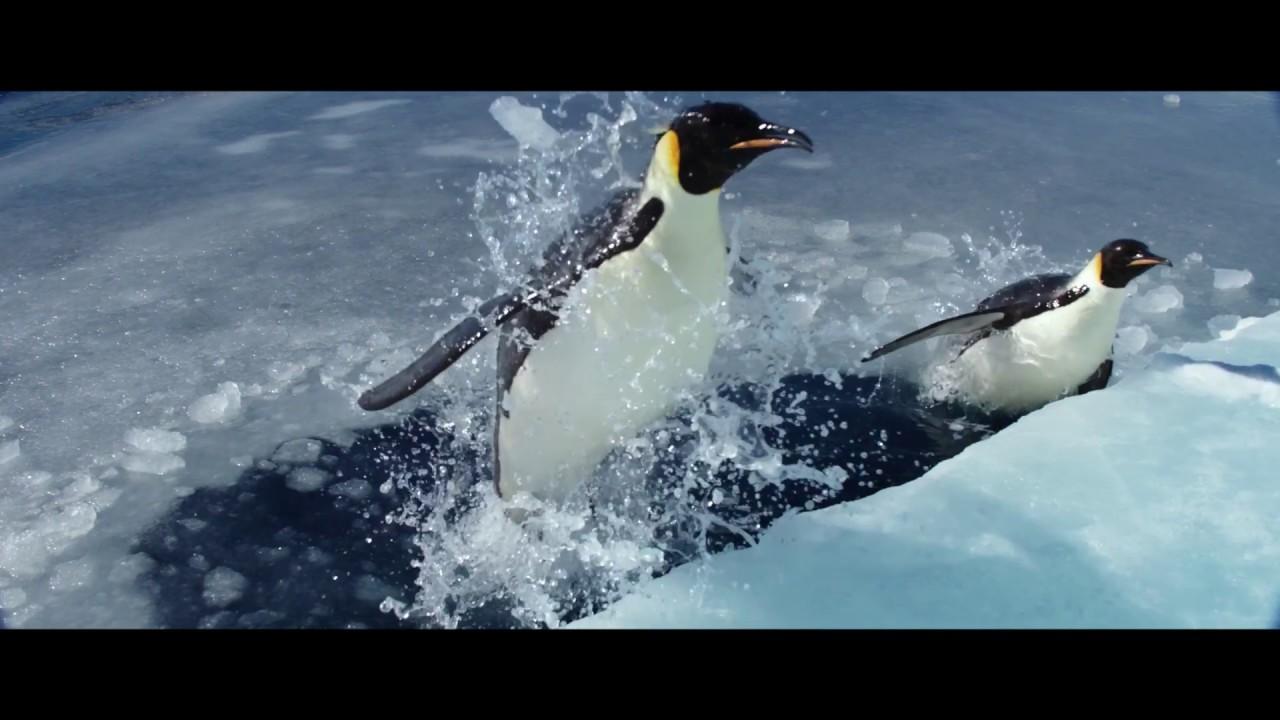 ΤΟ ΤΑΞΙΔΙ ΤΟΥ ΑΥΤΟΚΡΑΤΟΡΑ 2: ΤΟ ΚΑΛΕΣΜΑ - Official Trailer
