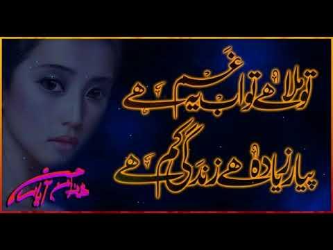 Yaar Ve Tedian Tasveeran  M Bilal Usmani Fazil Pur
