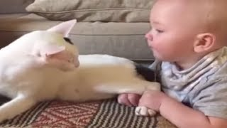 BABY YANKS ON RESCUED CAT'S LEGS – CAT'S RESPONSE HAS INTERNET CRACKING UP
