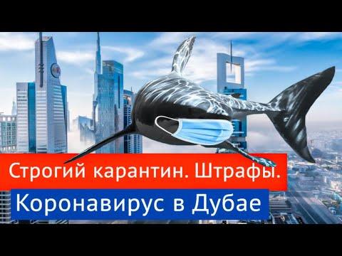 КАРАНТИН В ДУБАЕ: Штрафы за нарушение карантина. Разрешения на выход.