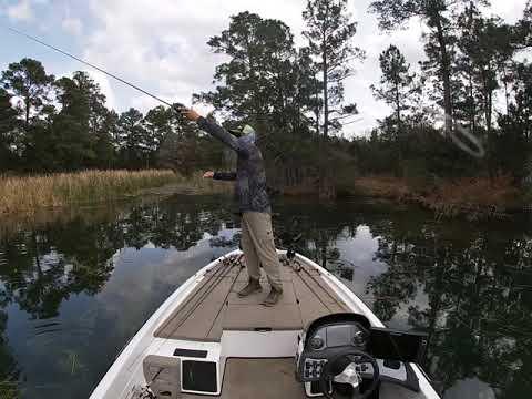 Fishing Lake Bastrop