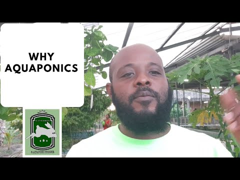 Trinidad Aquaponics – Why Aquaponic 15th April, 2020
