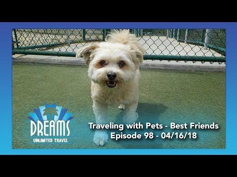 Best Friends Pet Care | 04/16/18