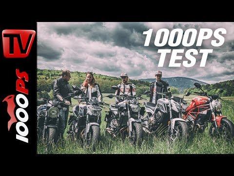 1000PS Test - Nakedbikes im Vergleich - CB650 - SV650 - Z650 - Monster - MT07