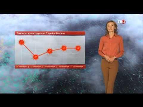 Погода сегодня, завтра, видео прогноз погоды на 21.9.2019 в России