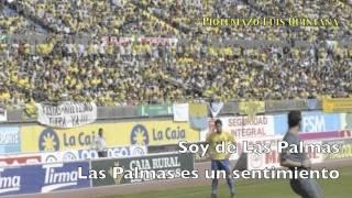 """Piotemazo """"Amarillo es mi color""""  Luis Quintana"""