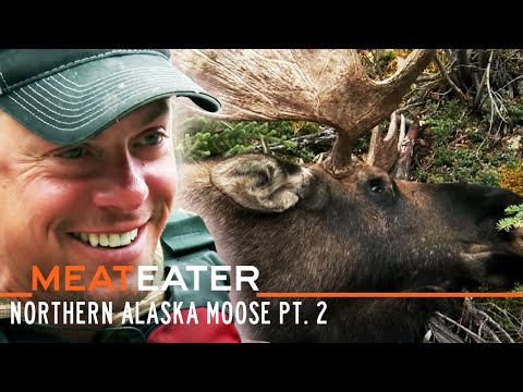 Yukon Giants: Northern Alaska Moose Pt. 2 | S5E02 | MeatEater