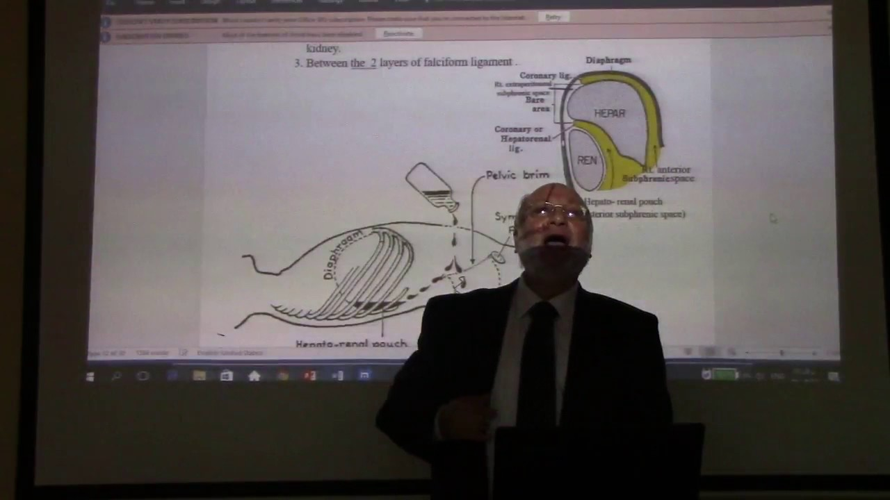 surgical anatomy of peritoneum pt6 and subphrenic spaces by Dr ...