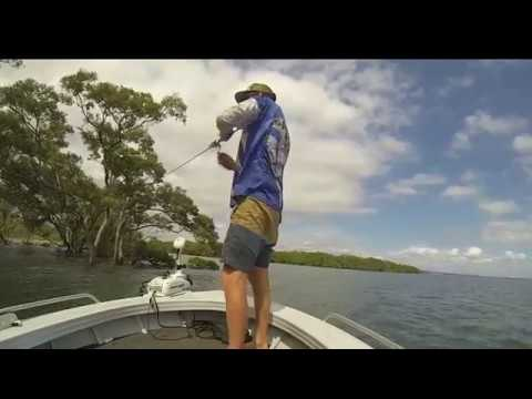 Breamin' the Mangrove Edges with Ryan Dixon