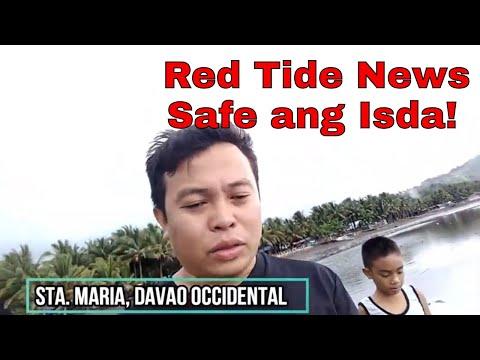 Jorhendz Vlog #2 - Paralytic Shellfish Poisoning