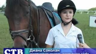 В районе все популярней становится конный спорт