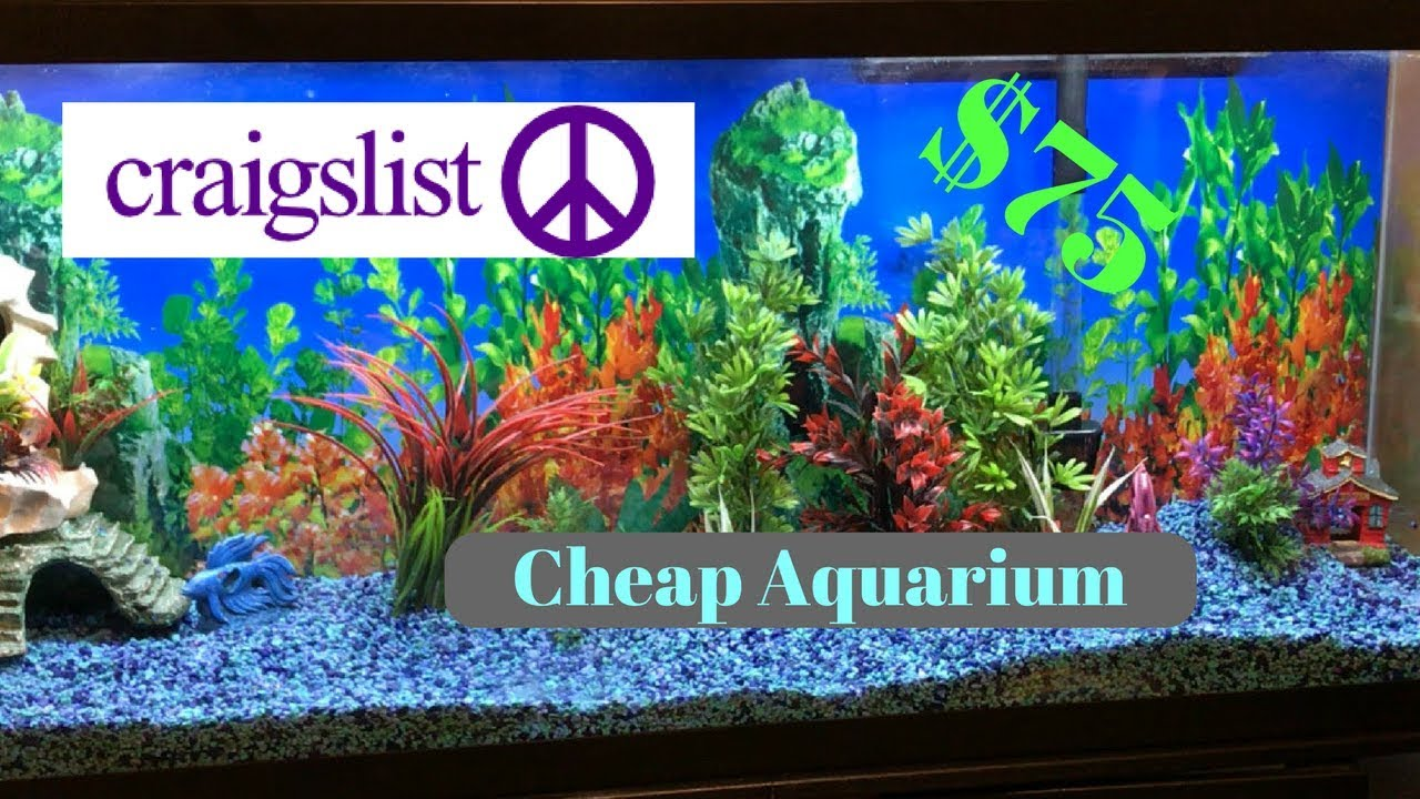 getting an aquarium from