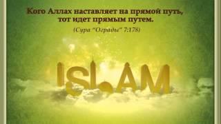 Салим Абу Умар аль-Газзи - Запрет Такфира 2