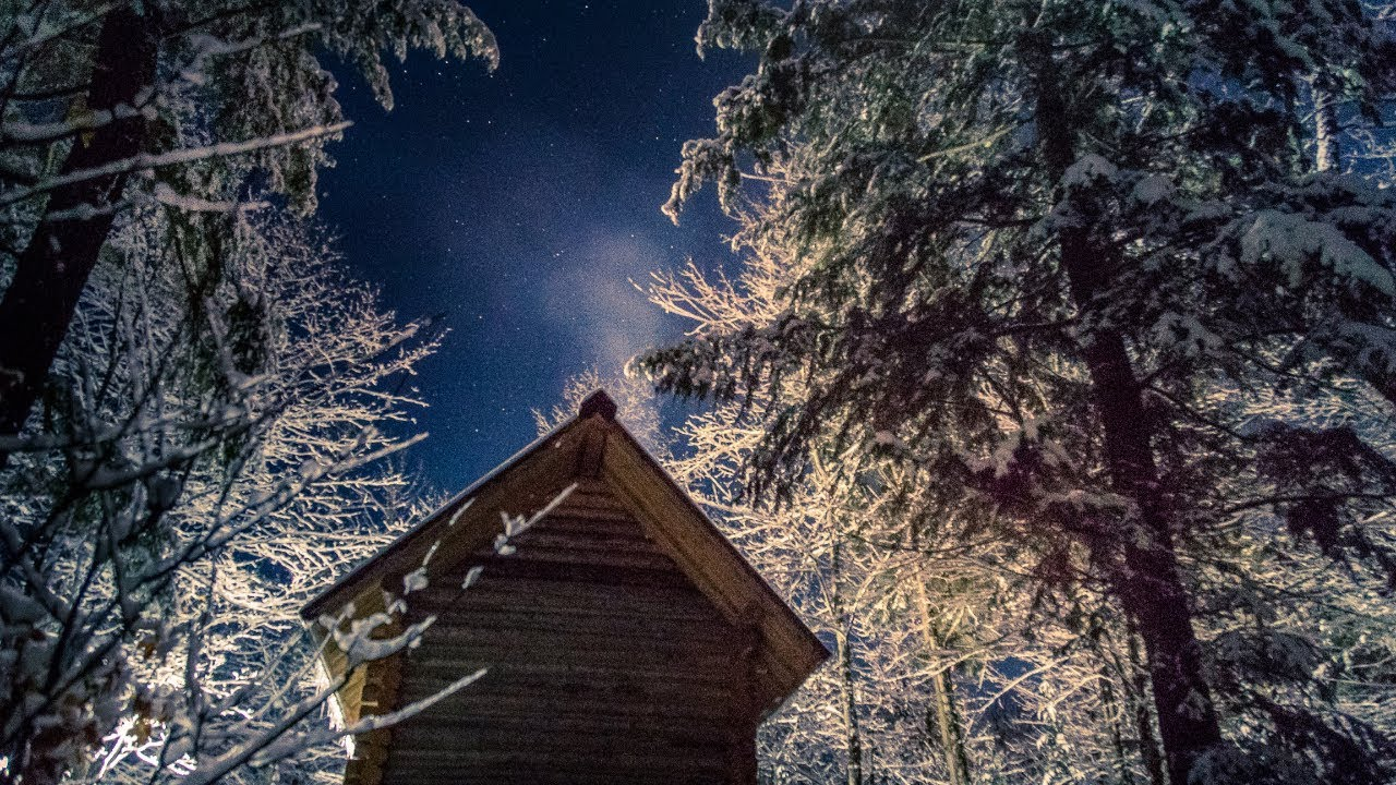 my-wild-life-at-the-log-cabin