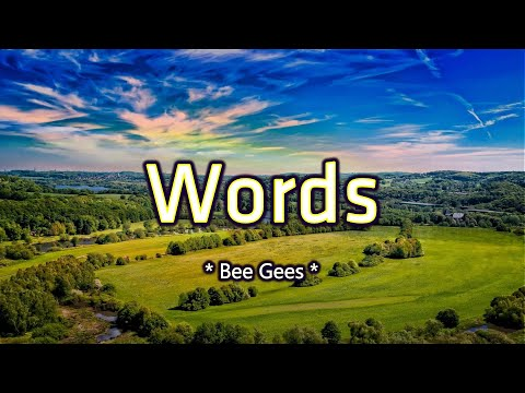 words---karaoke-version---as-popularized-by-bee-gees