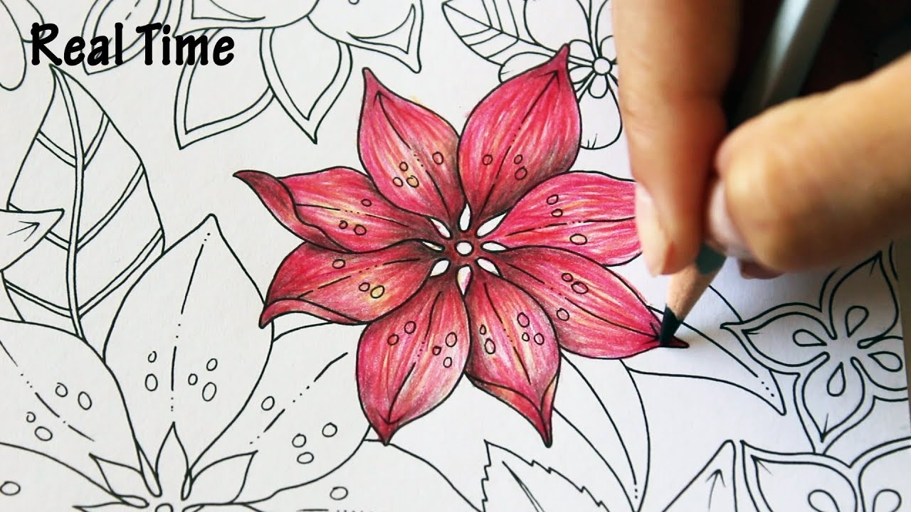 4 ways to color Flowers | Real Time Coloring | MAGICAL JUNGLE by ...