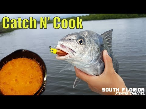 Indian River Inshore Fishing Catch n Cook