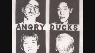 Angry Ducks - Drinkin Drivin.wmv