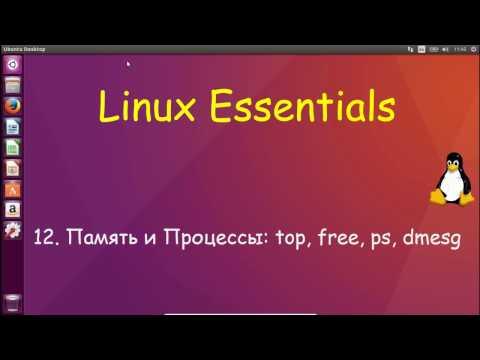 Как посмотреть процессы в линукс