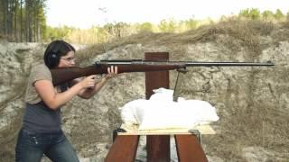 T-Gewehr Preview