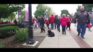 Best Dog Training in Columbus, Ohio! 1 Year Old German Shepherd, Rumplestiltskin!