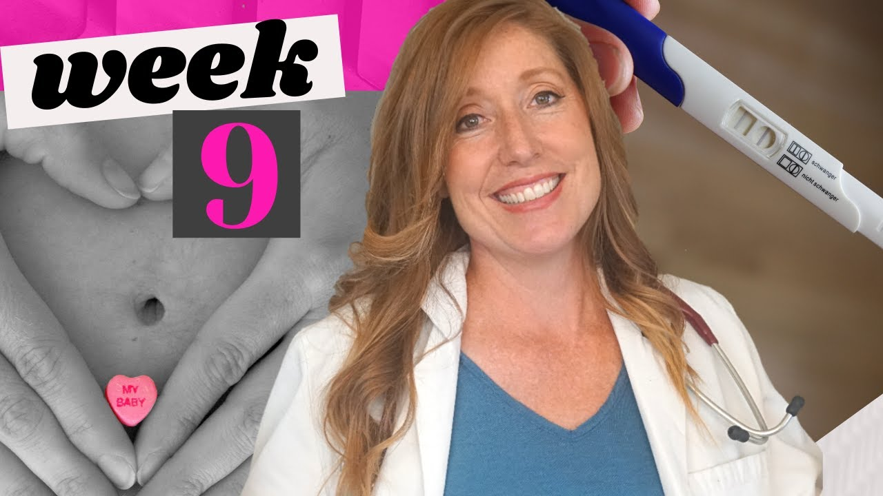 Download What to Expect in the First Trimester   9 Week Ultrasound and Common Problems