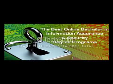 Best online schools for it degrees