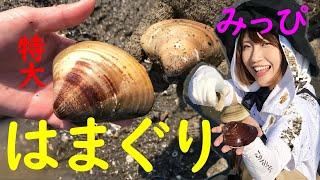 大人気「みっぴ」こと秋丸美帆さんの潮干狩り! 愉快な仲間(なみりあん...