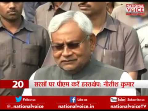 Nitish Kumar urges PM Modi to overrule clearance to GM mustard