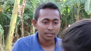 Download lagu Telenovela   Uma Kompletu Timor Leste