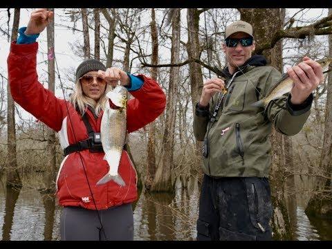 NONSTOP North Carolina SHAD FISHING On The NEUSE RIVER - 4K
