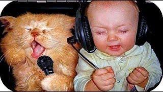 Быстрые приколы под музыку!!!