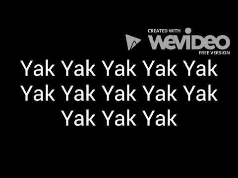 Animaniacs - I'm Mad lyrics