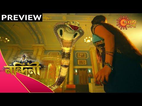 Nandini - Preview   16th Feb 2020   Sun Bangla TV Serial   Bengali Serial