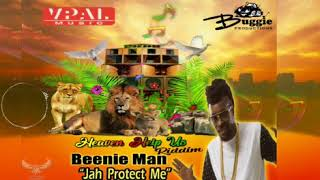 Watch Beenie Man Protect Me video