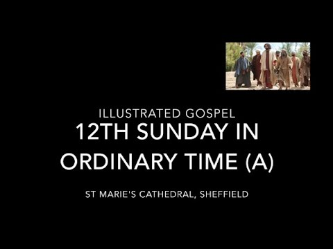 Illustrated Gospel for Matthew 10:26-33 / 12th Sunday in Ordinary Time (Year A) / 21st June 2020