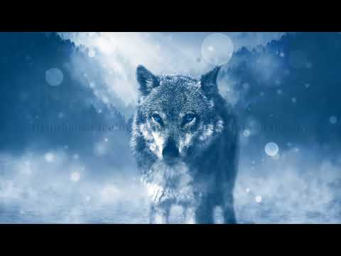 Nightcore Wolves (Lyrics)