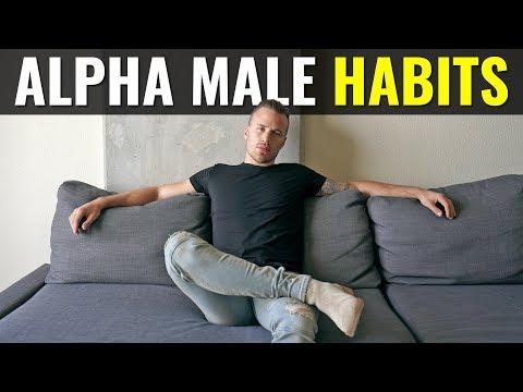 Top 5 Habits of Alpha Males